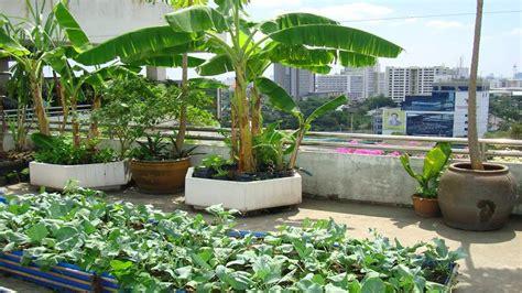 Garden Decoration Design by Inspiring Roof Top Garden Designs Ideas