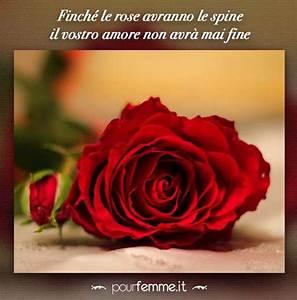Frasi Anniversario Matrimonio Foto 1140 Matrimonio