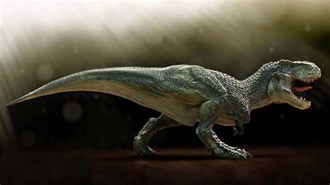 Animal Dinosaur Wallpaper - animals dinosaurs wallpaper 1920x1080 wallpoper