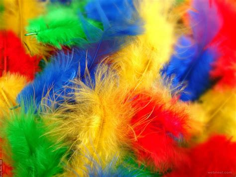 vibrant color photography 19