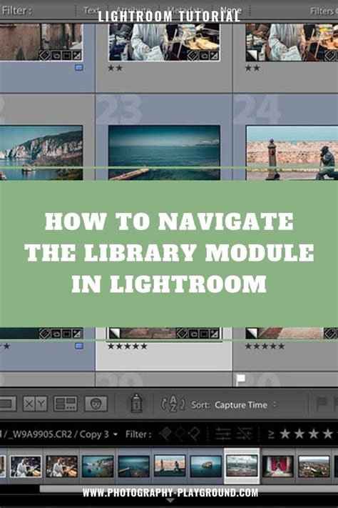 The photo i've selected for this exercise, is one you can easily replicate at home. Lightroom Tutorial for Beginners | Photography Playground ...