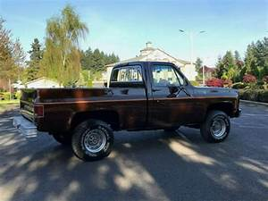 1979 Chevy Scottsdale K10 4x4 Reg Cab Short Bed 350 V8