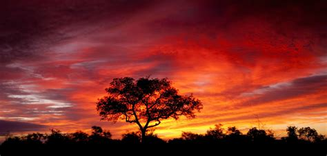 Africa Wallpapers, Photos And Desktop Backgrounds Up To 8k