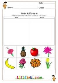 fruits  flowers worksheetsevs worksheetsprintable