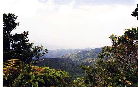 Blue Mountain Peak