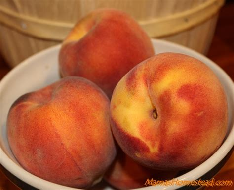 Canning Peaches Mama Homestead