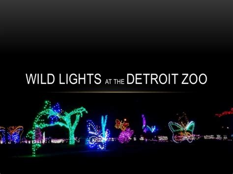 brew lights at zoo lights wild lights at the detroit zoo