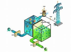 Comment Faire De L Électricité : l 39 osmose pour produire de l 39 lectricit faites le plein ~ Melissatoandfro.com Idées de Décoration