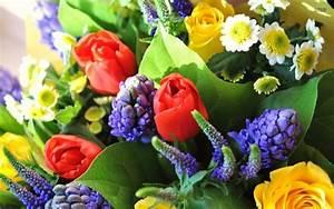 Beau Bouquet De Fleur : comment conserver un bouquet de fleurs et l entretenir ~ Dallasstarsshop.com Idées de Décoration