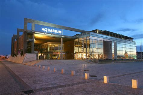 plan du site aquarium la rochelle site officiel