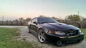 Daily Turismo: 20k: Terminator: 2004 Ford Mustang Cobra
