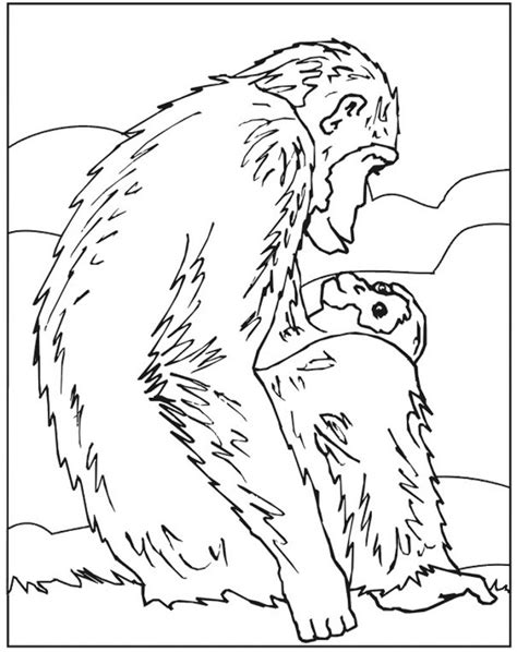 Coloring Pages To Print by Free Printable Chimpanzee Coloring Pages For