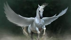 Pegasus, Horse, Wings, Animals, Wallpapers, Hd, Desktop, And