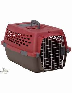 petmate kennel cab fashion pet carrier samba red coffee With petmate medium dog crate