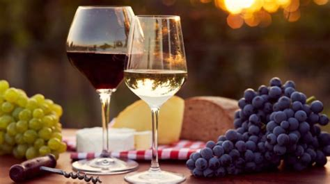 is chagne wine how climate change is affecting the quality of wine ndtv food