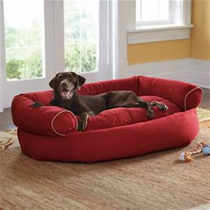 dog house shed kennel design ideas tips shed liquidators With dog sofa bed