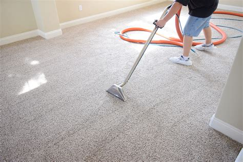Carpet Cleaners Carpet Cleansing Essentials Carpet Cleaning
