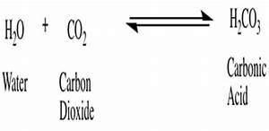 Chemical Makeup Of Carbonated Water - Mugeek Vidalondon