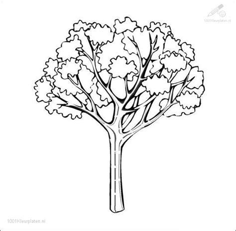 Kleurplaten Bladeren Bomen by Kleurplaat Herfst Boom