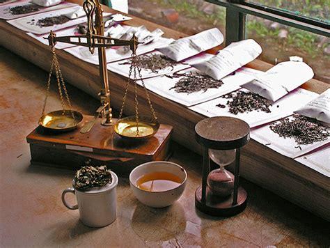 Quick History Of Tea