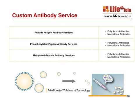 Custom Peptide Synthesis Services. Florida Hurricane Damage Dmaic Lean Six Sigma. Rosemount Middle School Price Of Jeep Cherokee. Web Hosting Month To Month Cool Email Domains. Sap Business Analytics Sms Short Code Service. Cosmetic Dentistry Fairfield Ct. Hecm For Purchase Calculator. Efficiency Of Heat Pump Excellence In Fitness. Gi Bill Debt Management Insurance Arlington Tx