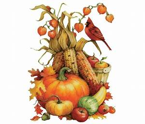 Happy Thanksgiving - Plumline Nursery