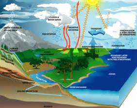 Global Water Cycle Study