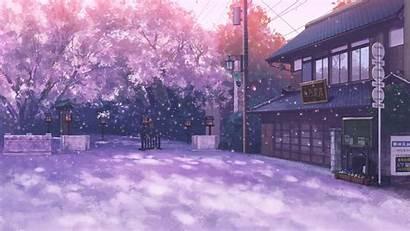 Sakura Anime Street Petals Landscape Wallpapers Blossom