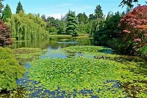 Vandusen botanical garden for Vandusen botanical garden