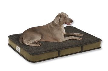 orvis tempur pedic 174 dream lounger dog bed shearling covers