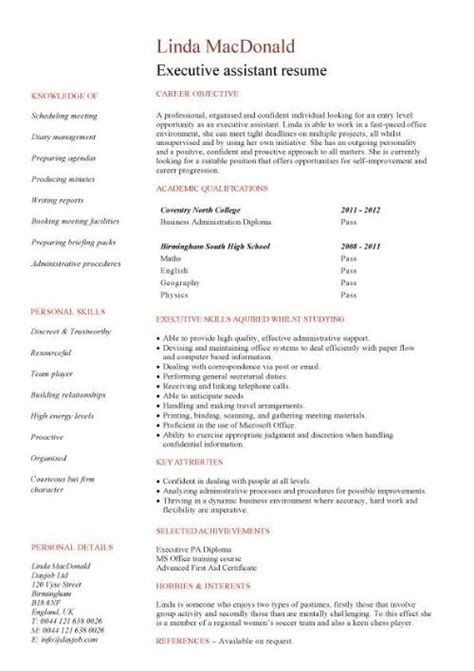Marketing Assistant Resume No Experience by Executive Cv Template Resume Professional Cv Executive