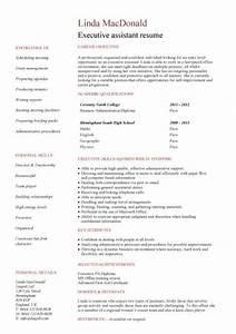 Resume Template No Experience Gfyork