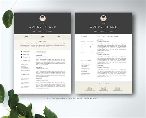 resume template  ms word resume templates creative