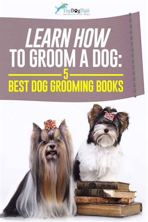 best grooming best 25 grooming business ideas on pet