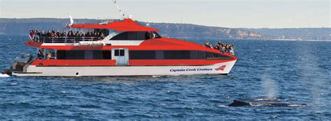 Catamaran Boat Share Sydney by Maggie Cat Captain Cook Cruises