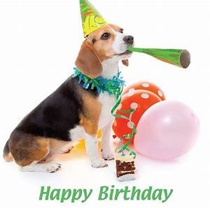 Happy Birthday Blank Card - Party Hat Beagle Puppy Dog ...
