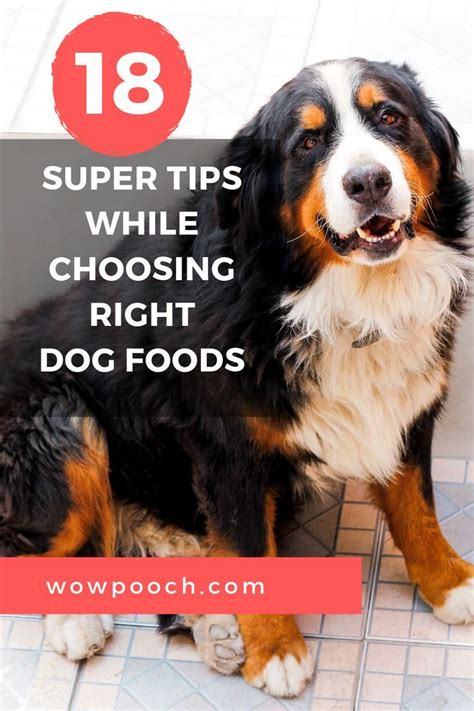 Diabetic diets for dogs that are homemade are created in two different ways: 107 Best Diabetic Dog Food Recipes Homemade images in 2019   Dog food recipes, Diabetic dog ...