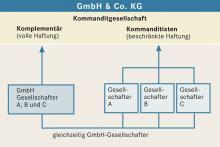 Der Holzwurm Gmbh Co Kg by Gmbh Co Kg Bpb