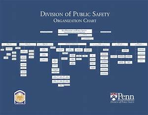 Organization Chart Division Of Public Safety
