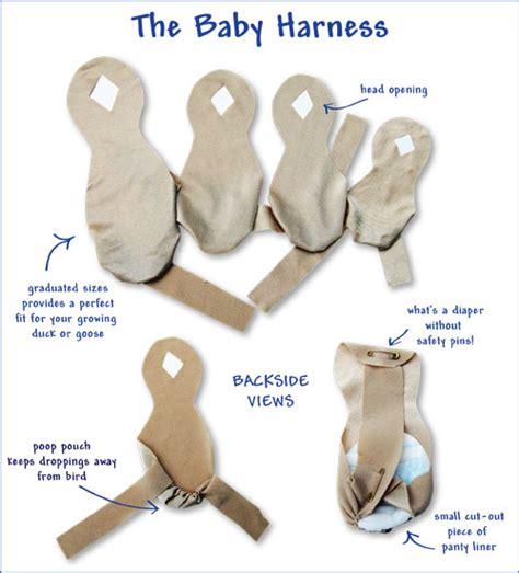 baby harnesses avian fashions