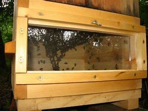 Regenwasserfilter Selber Bauen : blick in einen bienenstock konstantin kirsch blog ~ Lizthompson.info Haus und Dekorationen