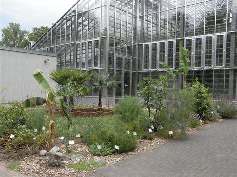 nutzpflanzen im botanischen garten freiburg botanischer