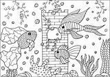 Aquarium Fishes Coloring Tree Aquatic Plants Adults Adult Fins Castle Patterns Three Animals sketch template