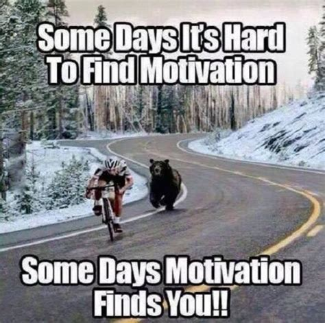 Funny Encouraging Memes - find motivation funny pictures quotes memes jokes