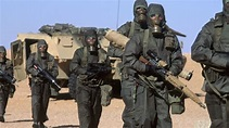 Persian Gulf War - HISTORY