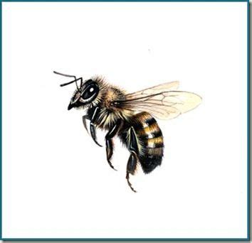 3D Realistic Flying Bee Tattoo Design