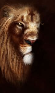 68+ Roaring Lion Wallpapers on WallpaperPlay | Lion ...