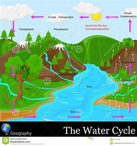Water Cycle Stock Photos