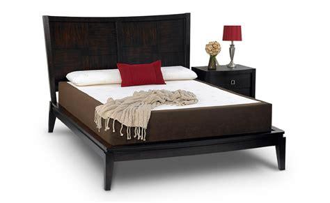 Amerisleep Revere Bed by Amerisleep Revere Bed New Best Mattress For Arthritis