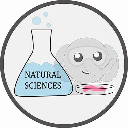 Natural Sciences Tufts Bs Students Liberal Requirements